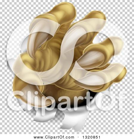 Transparent clip art background preview #COLLC1320851