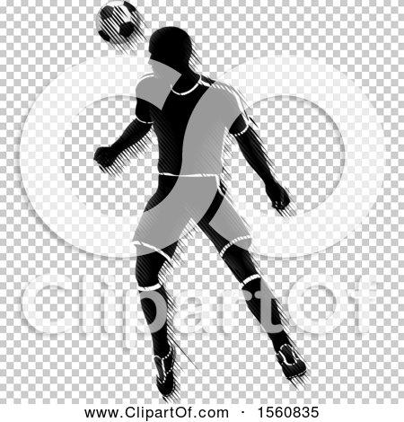 Transparent clip art background preview #COLLC1560835