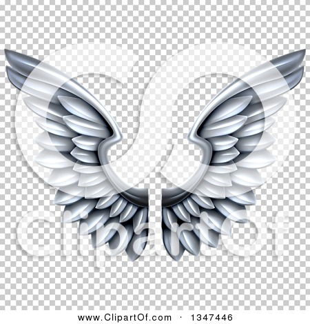 Transparent clip art background preview #COLLC1347446