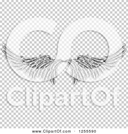 Transparent clip art background preview #COLLC1255590