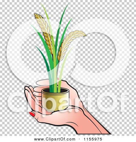 Transparent clip art background preview #COLLC1155975