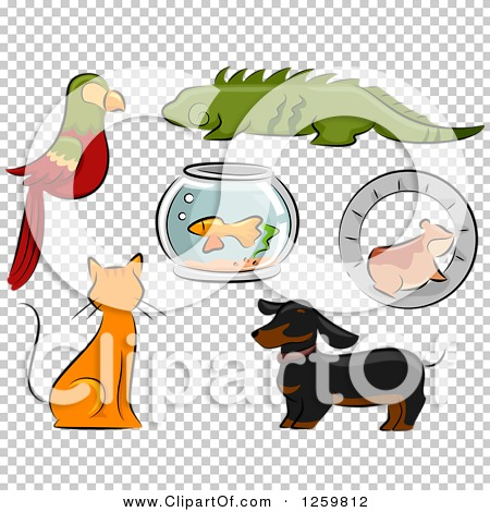 Transparent clip art background preview #COLLC1259812