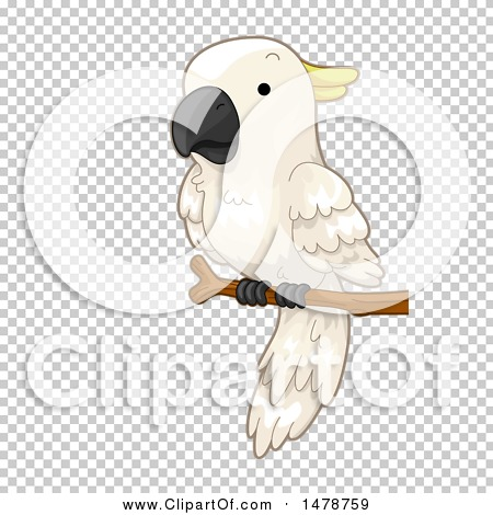 Transparent clip art background preview #COLLC1478759