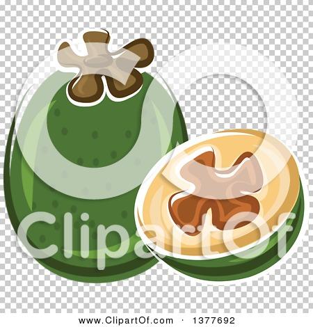 Transparent clip art background preview #COLLC1377692