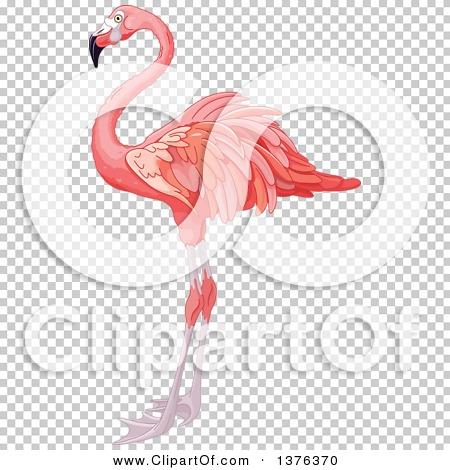 Transparent clip art background preview #COLLC1376370