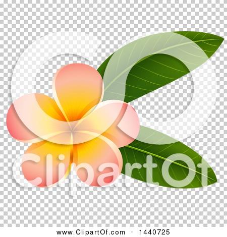 Transparent clip art background preview #COLLC1440725