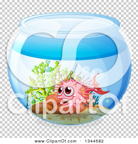 Transparent clip art background preview #COLLC1344582