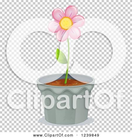 Transparent clip art background preview #COLLC1239849