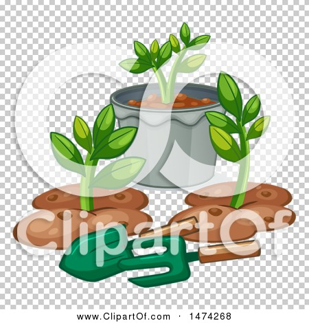 Transparent clip art background preview #COLLC1474268