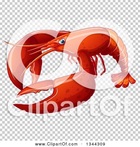 Transparent clip art background preview #COLLC1344309