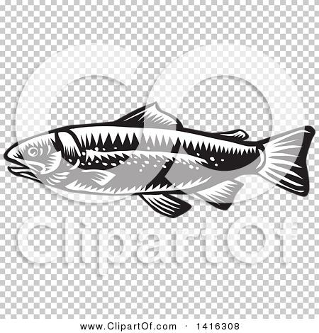 Transparent clip art background preview #COLLC1416308