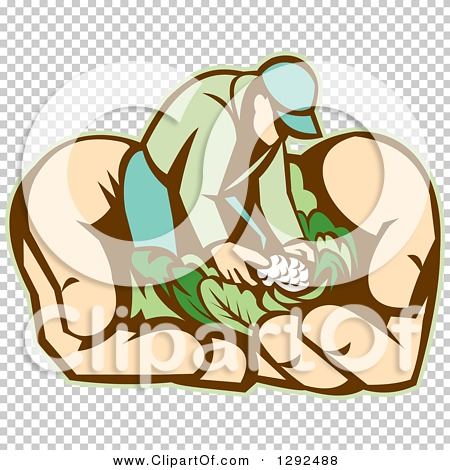 Transparent clip art background preview #COLLC1292488