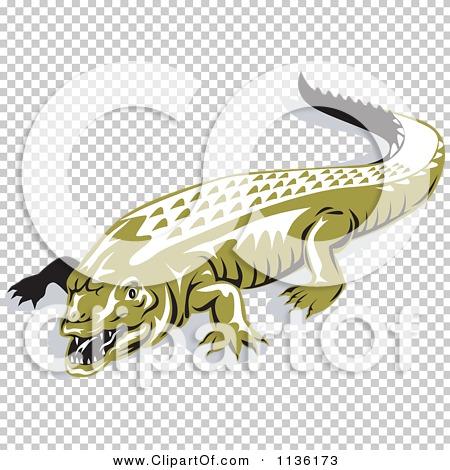 Transparent clip art background preview #COLLC1136173