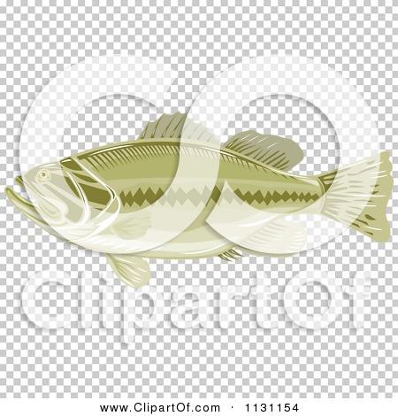 Transparent clip art background preview #COLLC1131154