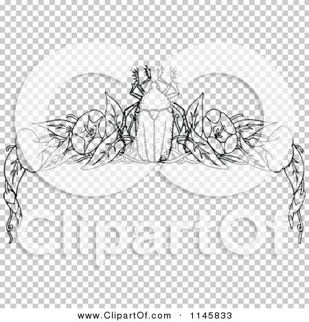 Transparent clip art background preview #COLLC1145833