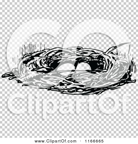 Transparent clip art background preview #COLLC1166665