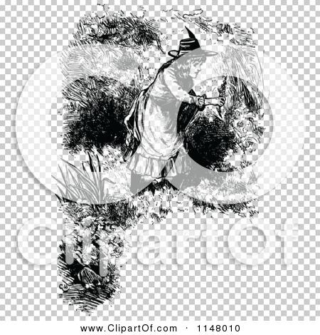 Transparent clip art background preview #COLLC1148010