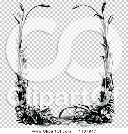 Transparent clip art background preview #COLLC1137847