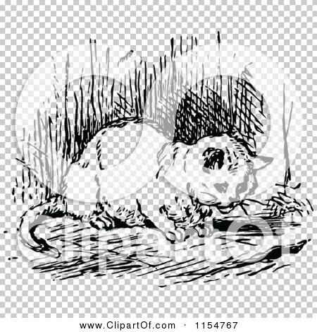 Transparent clip art background preview #COLLC1154767