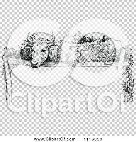 Transparent clip art background preview #COLLC1116850