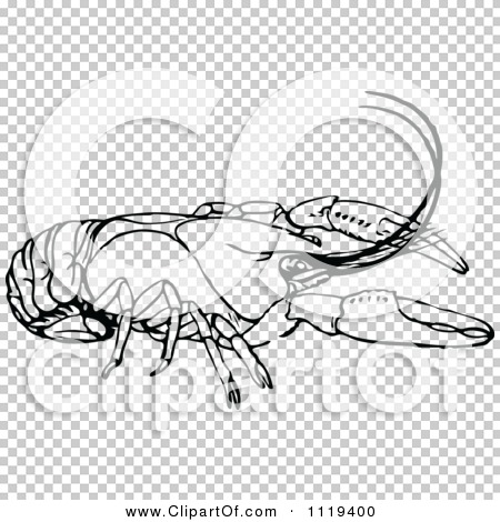 Transparent clip art background preview #COLLC1119400
