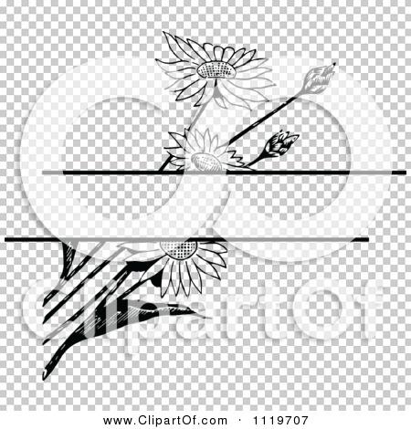 Transparent clip art background preview #COLLC1119707