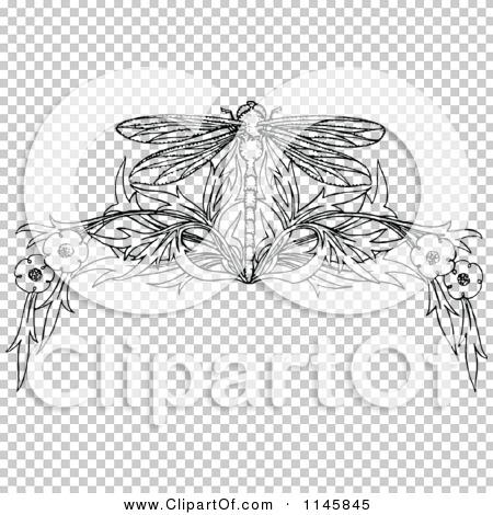 Transparent clip art background preview #COLLC1145845