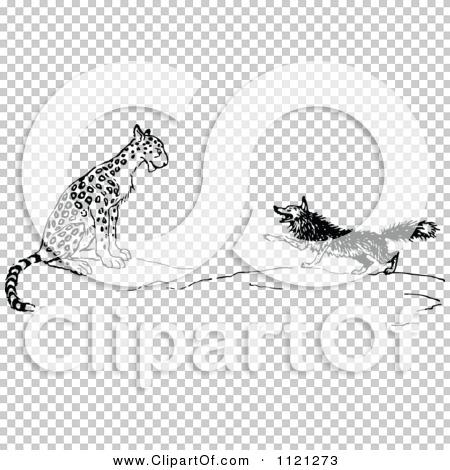 Transparent clip art background preview #COLLC1121273