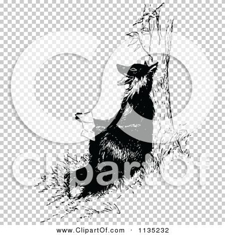 Transparent clip art background preview #COLLC1135232