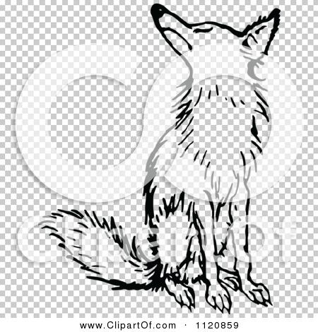 Transparent clip art background preview #COLLC1120859
