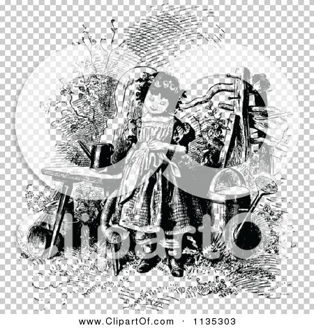 Transparent clip art background preview #COLLC1135303