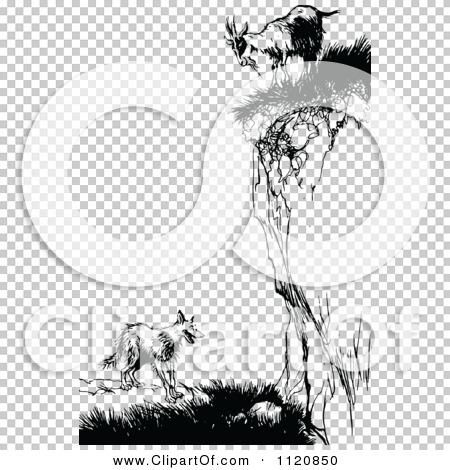Transparent clip art background preview #COLLC1120850