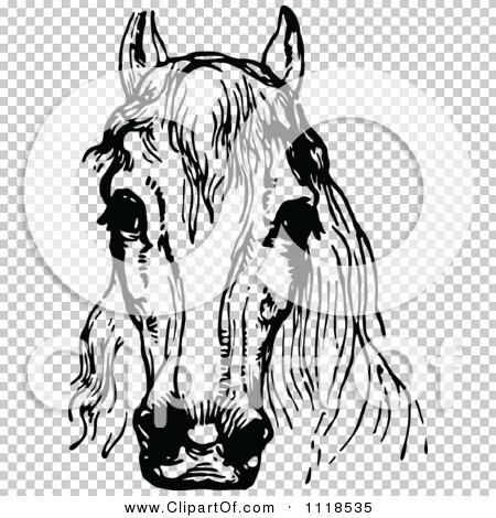 Transparent clip art background preview #COLLC1118535