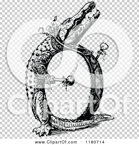 Transparent clip art background preview #COLLC1180714