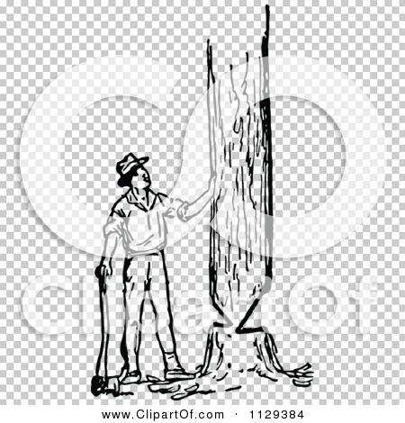 Transparent clip art background preview #COLLC1129384