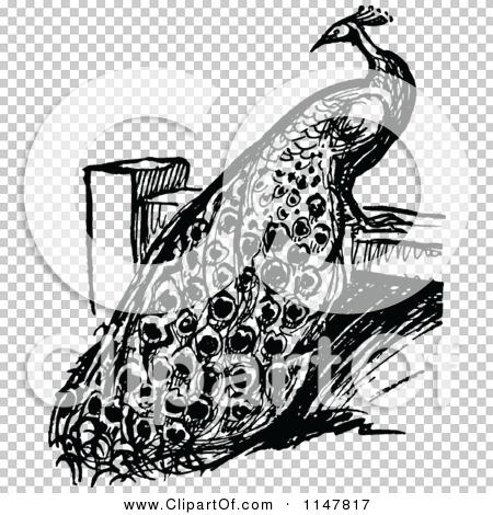 Transparent clip art background preview #COLLC1147817