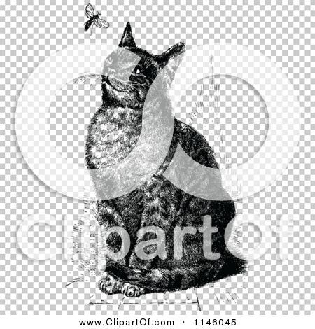 Transparent clip art background preview #COLLC1146045