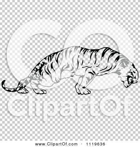 Transparent clip art background preview #COLLC1119636