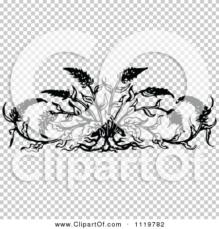 Transparent clip art background preview #COLLC1119782