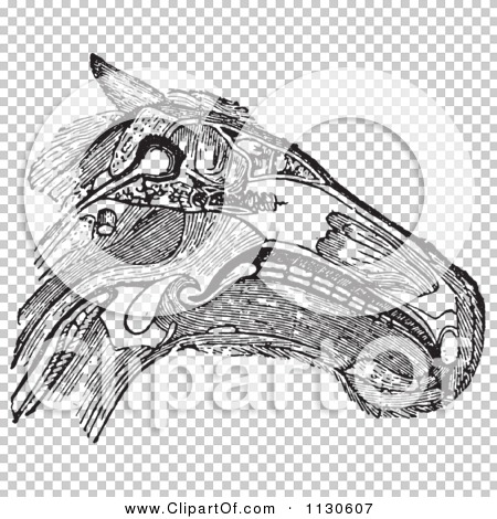 Transparent clip art background preview #COLLC1130607