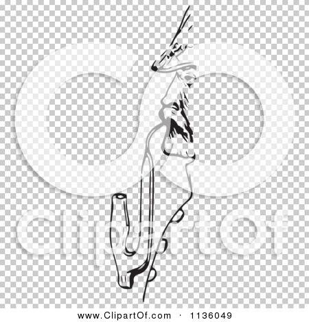 Transparent clip art background preview #COLLC1136049