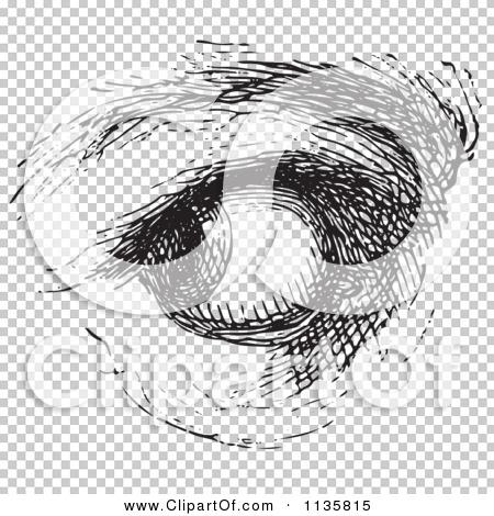 Transparent clip art background preview #COLLC1135815