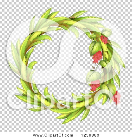 Transparent clip art background preview #COLLC1239880