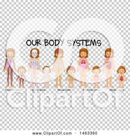 Transparent clip art background preview #COLLC1463360