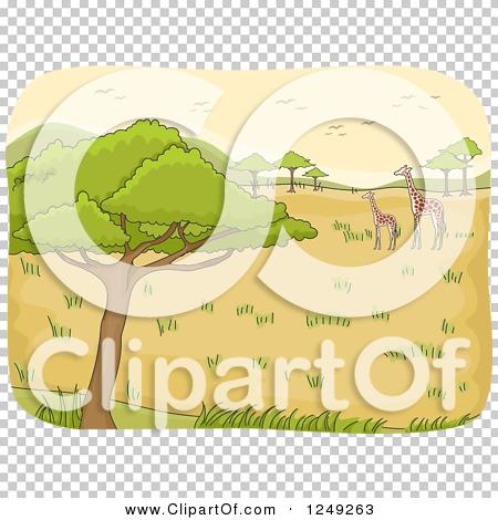 Transparent clip art background preview #COLLC1249263