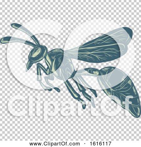 Transparent clip art background preview #COLLC1616117
