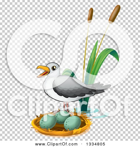 Transparent clip art background preview #COLLC1334805