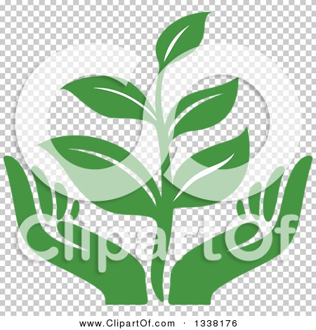Transparent clip art background preview #COLLC1338176
