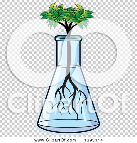 Transparent clip art background preview #COLLC1393114