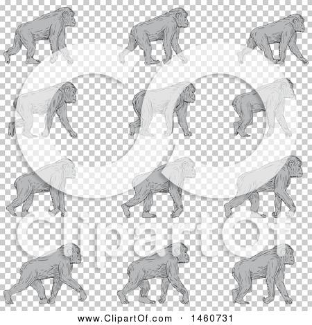 Transparent clip art background preview #COLLC1460731